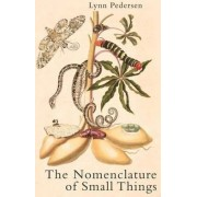 The Nomenclature of Small Things by Lynn Pedersen