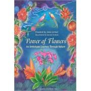 Jeu de cartes - Oracles - Power of Flowers: An Archétypal Journée Through Nature