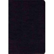 NIV Study Bible, Premium Leather, Black, Red Letter Edition by Zondervan Publishing