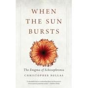 When the Sun Bursts: The Enigma of Schizophrenia, Paperback