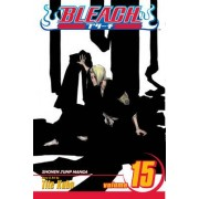 Bleach, Vol. 15 by Tite Kubo