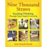 Nine Thousand Straws by Jean Sausele Knodt