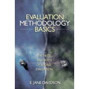 Evaluation Methodology Basics by E. Jane Davidson
