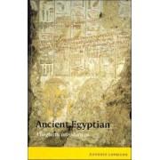 Ancient Egyptian by Antonio Loprieno