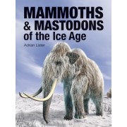 Mammoths & Mastodons of the Ice Age by Adrian Lister