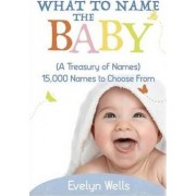 What to Name the Baby (a Treasury of Names) by Evelyn Wells