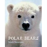 Polar Bears by Mark Newman