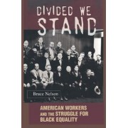 Divided We Stand by Bruce Nelson