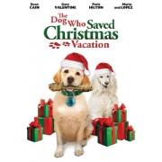 Dog Who Saved Christmas Vacation [Reino Unido] [DVD]
