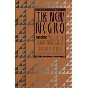 The New Negro by Alain Locke