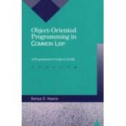 Object-Oriented Programming in Common LISP by Sonya E Keene