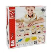 Hape - Home Education - Trio Card Game