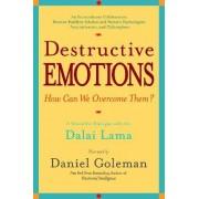 Destructive Emotions by Prof Daniel Goleman PH D