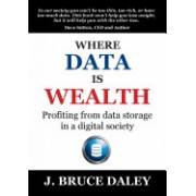 Where Data Is Wealth: Profiting from Data Storage in a Digital Society