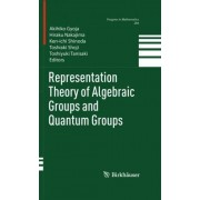 Representation Theory of Algebraic Groups and Quantum Groups: Preliminary Entry 520 by A. Gyoja
