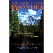 The Capacity for Wonder by William R. Lowry