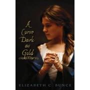 A Curse Dark as Gold by Elizabeth Bunce
