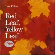 Red Leaf, Yellow Leaf by Lois Ehlert