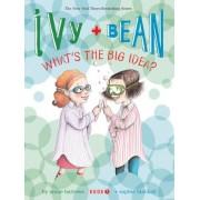 Ivy & Bean: Bk. 7 by Annie Barrows