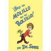 Hay Un Molillo En Mi Bolsillo! by Dr Seuss