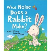 What Noise Does a Rabbit Make? by Carrie Weston