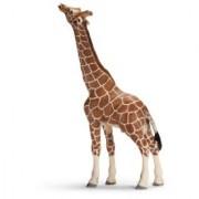 Schleich Giraffe Male Eating 14389