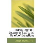 Looking Beyond by Joseph O Barrett