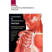 Anatomy and Physiology Flash Cards by Scientific Publishing