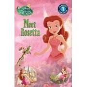 Disney Fairies: Meet Rosetta