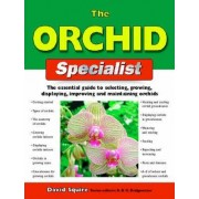 The Orchid Specialist by David Squire
