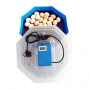 Incubator electric CLEO 5 TH cu termohigrometru