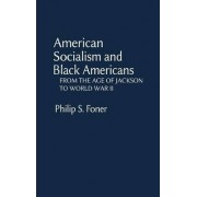 American Socialism and Black Americans by Laura Foner