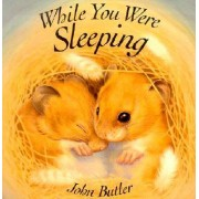 While You Were Sleeping by Professor John Butler