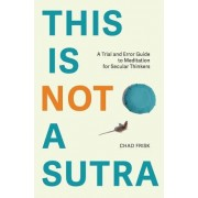 This Is Not a Sutra: A Trial and Error Guide to Meditation for Secular Thinkers