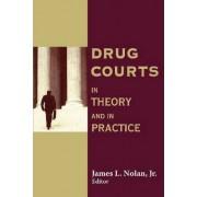 Drug Courts by James L. Nolan