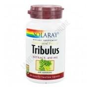 Tribulus extracto Solaray 450 mg. 60 c