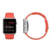 Kosee Apple Watch Silikon Ersatzarmband mit Integriertem Magnetischem Metallverschluss (Matt-Rott) * 38mm