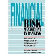 Financial Risk Management in Banking by Dennis Uyemura