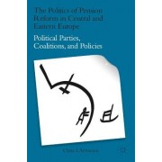The Politics of Pension Reform in Central and Eastern Europe by Oana I. Armeanu