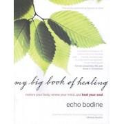 My Big Book of Healing by Echo Bodine