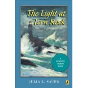 The Light at Tern Rock by Julia L. Sauer