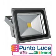 Faro Proiettore A Led Esterno IP65 220V 30W Luce fredda