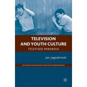 Television and Youth Culture by Jan Jagodzinski