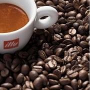 Capsulas con café illy descafeinado
