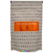Maytenus Ilicifolia gyógytea 105 g - Energy