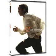 12 Years a Slave:Chiwetel Ejiofor,Lupita Nyong'o,Michael Fassbender - 12 Ani de sclavie (DVD)