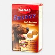 Sanal Dog Energy Beef 100 g