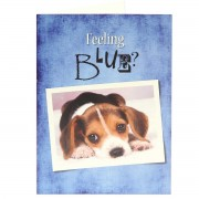 Feeling Blue? - Psalms 55:22 - (Scriptural Greeting Card)