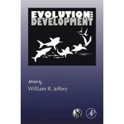 Evolution and Development: Volume 86 by William R. Jeffery