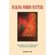 Making Words Matter by Ambreen Hai